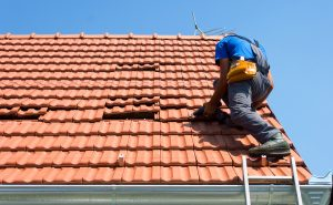 Nettoyage et entretien de toiture : les bons gestes à adopter